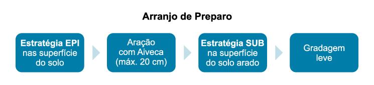 Obs.: Sistema preparado com antecedência ao plantio, em função do tipo do calcário utilizado (grau de solubilização).